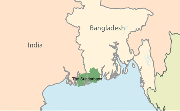 160317-IN-BD-Sundarbans