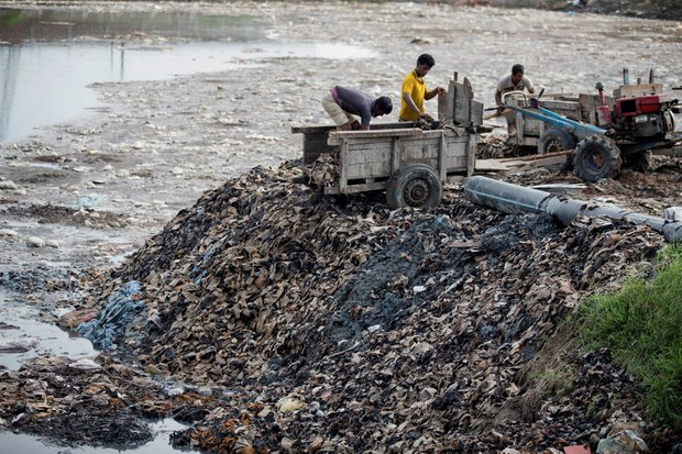 Bangladesh: Committee Raises Alarm Over Toxic Pollution from New Tanneries' Hub