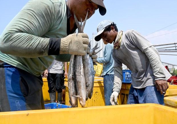 191210_ID_fishermen_1000.jpg