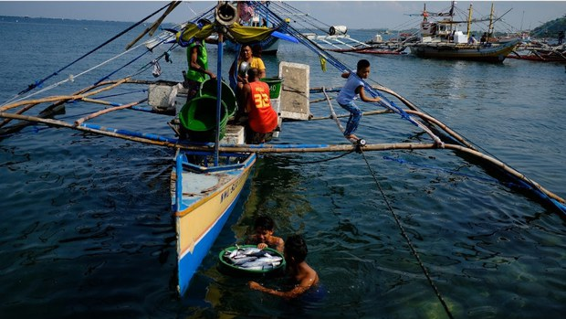 Maritime Law Expert Urges Manila to Name Islets in South China Sea