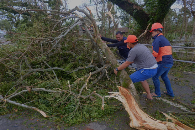Department of Public Works and Highways employees clear a fallen tree from a road near Bangui, Workers from the Department of public works and highways clear a fallen tree on the highway near Bangui, Sept. 15, 2018. (Luis Liwanag/BenarNews)
