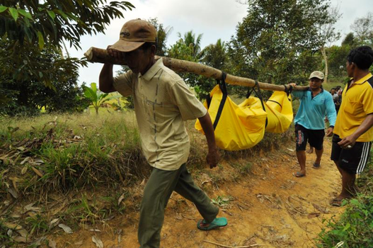 Villagers carry the body of a farmer killed by suspected MIT militants in Parigi Moutong regency, Indonesia, Sept. 14, 2015. [BenarNews]