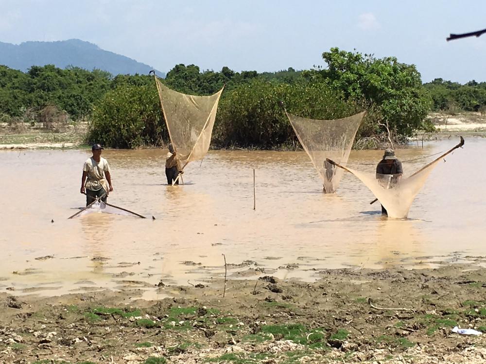 Adversity Pushes Southern Thais Toward Alternative Industries