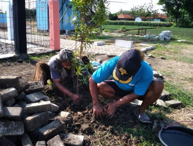 Wartoyo (kiri) merapikan tanaman bersama seorang warga setempat di areal Embung Larangan di kawasan Larangan, Kabupaten Brebes, Jawa Tengah, awal November 2020. [Kusumasari Ayuningtyas/BenarNews]