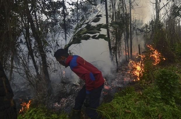 Kabut Asap Akibat Kebakaran Hutan Mulai Selimuti Riau