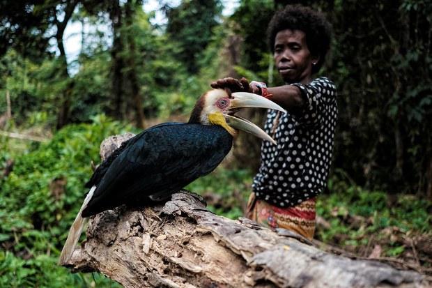 Mahkamah Tinggi Malaysia Lanjut Injunksi Kes Tanah Adat Orang Asli Kelantan