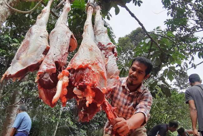นายกอเดร์ มะยิ แล่เนื้อวัวออกเป็น 7 ส่วน เท่า ๆ กัน ก่อนนำไปแจกแก่ผู้ยากไร้และด้อยโอกาสในชุมชน อำเภอยะหา จังหวัดยะลา วันที่ 31 กรกฎาคม 2563 (มารียัม อัฮหมัด/เบนาร์นิวส์)